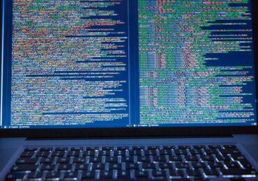 Go và Python: 2 ngôn ngữ lập trình hàng đầu của dân dev